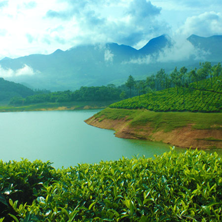 best holiday destination in Munnar - Anayirankal Dam